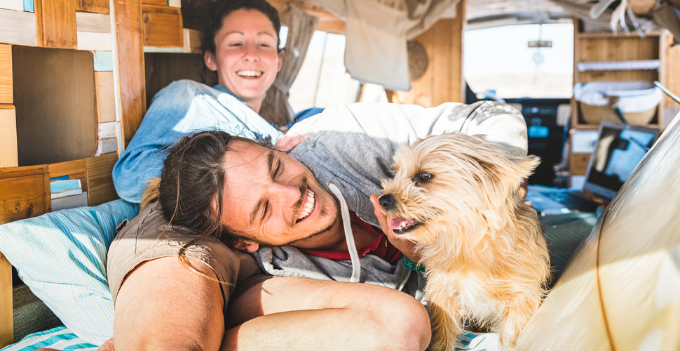Traveling With A Pet? Why Kleanbowls are the Perfect Travel Bowl